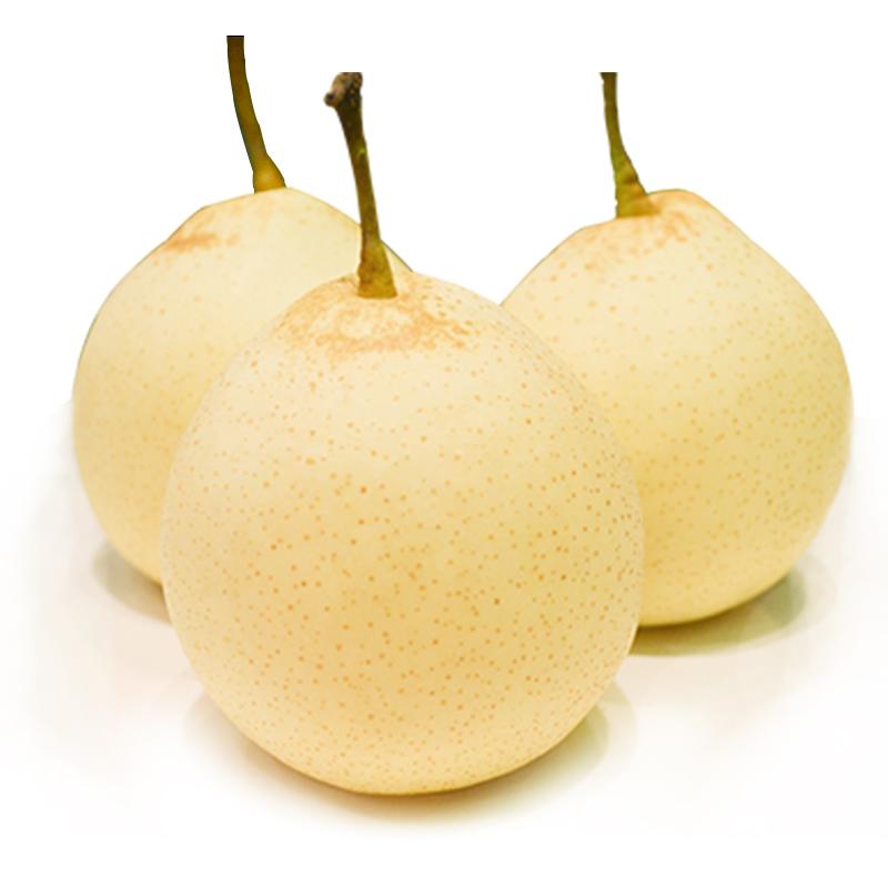 阳信 有机鸭梨(2.5kg装) 新鲜水果水晶梨健康水果