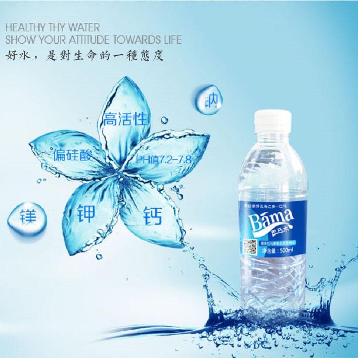 巴马特产长寿村矿泉水 10箱  24瓶/箱